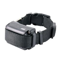 E-Collar BP 504