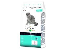 SCHESIR Cat Maintenance rybí 400g