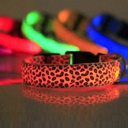 Reedog svítící obojek pro malé, střední a velké psy gepard
